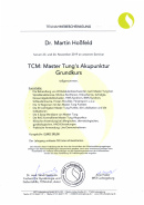 Fortbildung   Master Tung Akupunktur